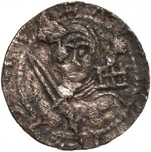 Władysław II Wygnaniec, Denar