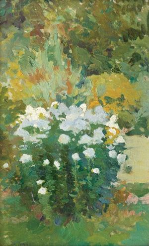 Trusz Iwan, FLOKSY (z cyklu Kwiaty)