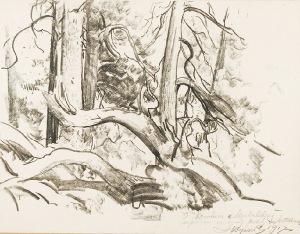 Leon WYCZÓŁKOWSKI (1852-1936), Las, 1917
