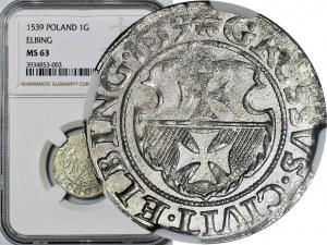Zygmunt l Stary, Grosz 1539, Elbląg