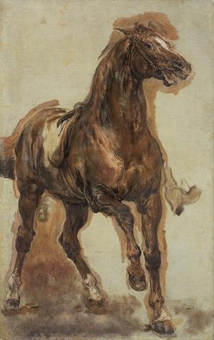 Matejko Jan, STUDIUM DO SOBIESKIEGO POD WIEDNIEM, 1882