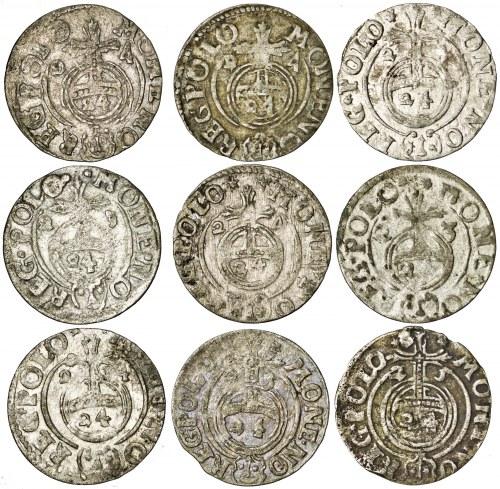 zestaw 9 x półtorak, Bydgoszcz, Zygmunt III Waza