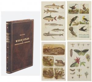 Wielki Atlas Do Zoologii, Botaniki I Mineralogii, Dr Gustaw von HAYEK (1836 - 1911)