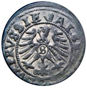 Albert Hohenzollern - Szeląg 1557 -