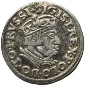Zygmunt I Stary, Trojak Gdańsk 1537