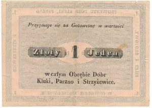 Kluki, Parzno i Strzyżewice - Dobra w obwodzie Piotrowskim 19th century