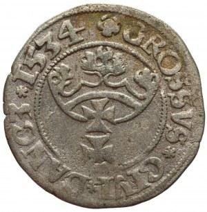 Zygmunt I Stary, Grosz Gdańsk 1534
