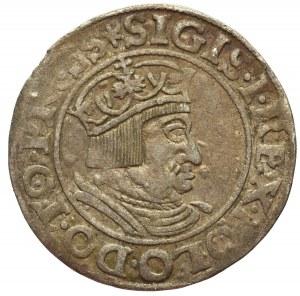 Zygmunt I Stary, Grosz Gdańsk 1535