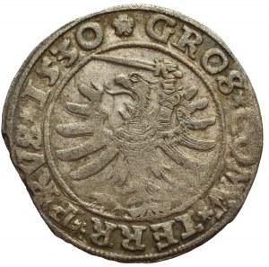 Zygmunt I Stary, Grosz Toruń 1530
