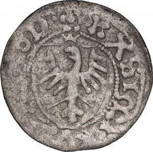 Kazimierz IV Jagiellończyk (1446-1492), szeląg, Gdańsk.