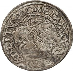 Zygmunt II August (1545-1572, monety litewskie, półgrosz 1566, Tykocin.