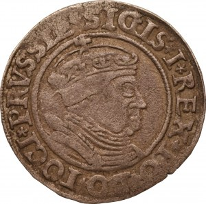 Zygmunt I Stary - grosz 1535 - Toruń
