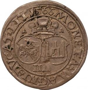 Zygmunt II August - czworak 1566 - Wilno