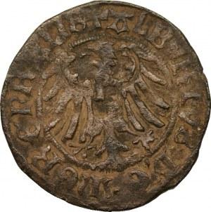 Albrecht Hohenzollern - grosz 1519 - rzadki