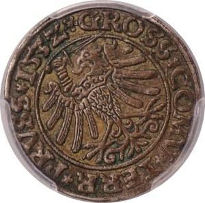 Zygmunt I Stary - grosz 1532 - Toruń - PCGS AU50
