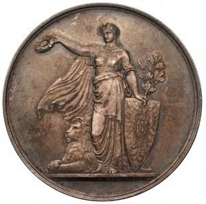 Medal - 5 federalny festiwal strzelectwa 1875 - Niemcy - Wirtembergia - Stuttgart