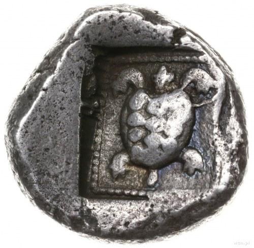 stater ok. 480-460 pne; Aw: Dzik atakujący w prawo; Rw:...