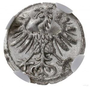 denar 1554, Wilno; Cesnulis-Ivanauskas 2SA12-6, Kop. 32...