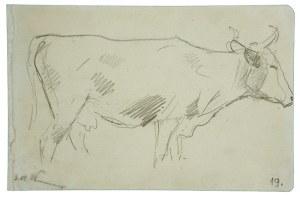Wojciech Kossak (1856-1942), Krowa – szkic
