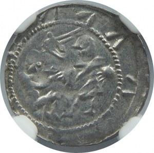 Władysław Wygnaniec, denar, NGC AU53