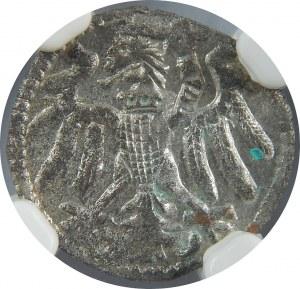 Zygmunt I Stary, Denar bez daty, Elbląg, NGC MS61