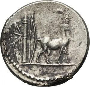 Republika Rzymska, Plancius, denar, 55 p.n.e., Rzym