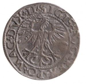 półgrosz 1562, końcówki napisu LI / LITV