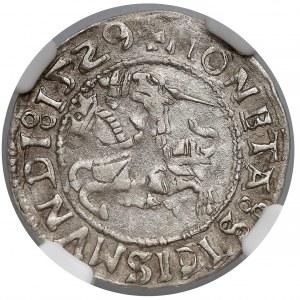 Zygmunt I Stary Półgrosz Wilno 1529 litera V - NGC AU53