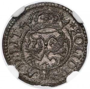Zygmunt III Waza, Szeląg Wilno 1622 - NGC MS62