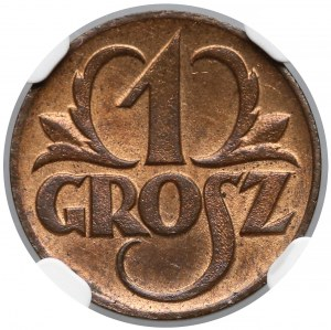 1 grosz 1923 - NGC MS66 RB