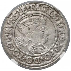 Zygmunt I Stary, Grosz Toruń 1535 - NGC AU55