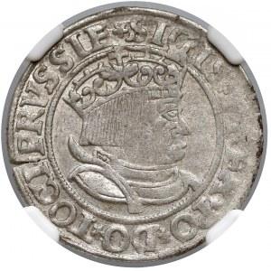 Zygmunt I Stary, Grosz Toruń 1534 - NGC AU58