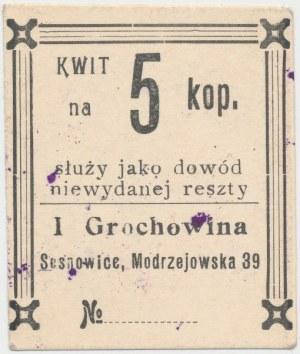 Sosnowice, I. Grochowina, 5 kopiejek - ze stemplem