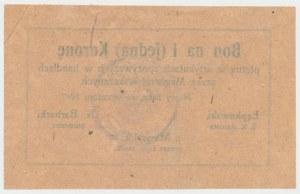 Nowy Sącz, 1 korona 1917 - wrzesień