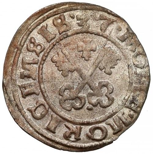 Zakon Kawalerów Mieczowych, Szeląg Ryga 1537