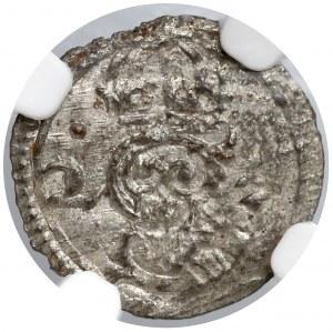 Zygmunt III Waza, Denar Łobżenica 1623 - NGC MS62