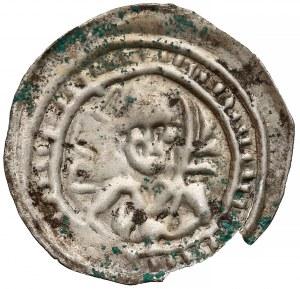 Mieszko III, Brakteat hebrajski - Książę z liściem palmowym