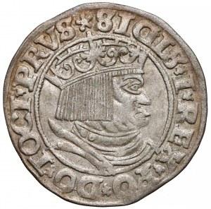 Zygmunt I Stary, Grosz Toruń 1531 - PRVS
