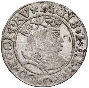 Zygmunt I Stary, Grosz Toruń 1531 - PRV