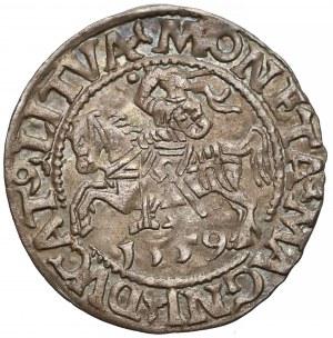Zygmunt II August, Półgrosz Wilno 1559 - rzadki