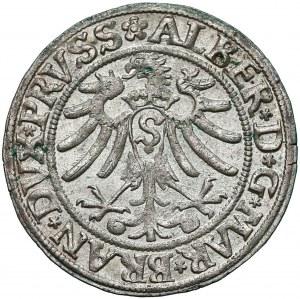 Prusy, Albert Hohenzollern, Grosz Królewiec 1533 - b. ładny