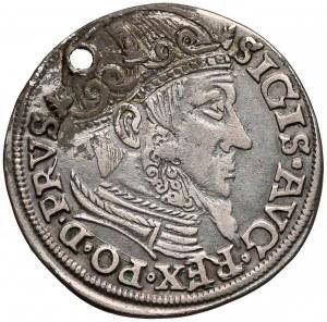 Zygmunt II August, Trojak Gdańsk 1557 - lilijki pod datą