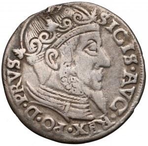 Zygmunt II August, Trojak Gdańsk 1558 - RZADKI