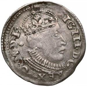 Zygmunt III Waza, Trojak Poznań 1588
