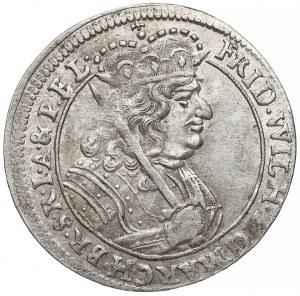 Niemcy, Prusy, Fryderyk Wilhelm, Ort Królewiec 1679 HS