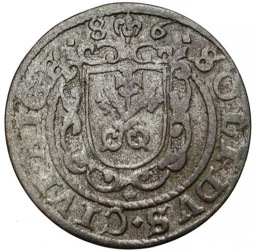 Stefan Batory, Szeląg Ryga 1686 - tarcza hiszpańska - rzadki