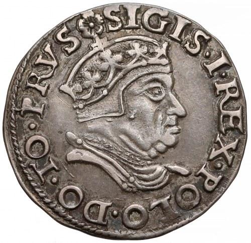 Zygmunt I Stary, Trojak Gdańsk 1546 - rzadki