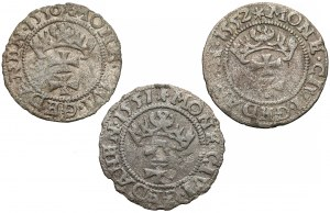 Zygmunt II August, Szelągi Gdańsk 1550-1552, rzadkie (3szt)