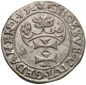 Zygmunt II August, Grosz Gdańsk 1556 - rozdwojona broda / PRVS