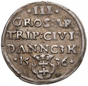Zygmunt I Stary, Trojak Gdańsk 1536 - ładny